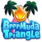 Brrrmuda Triangle
