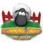  Running Sheep: Tiny Worlds spel