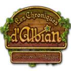 Les Chroniques d'Albian: La Convention Magique