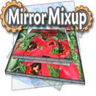 Mirror Mix-Up