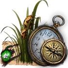 Treasure Island. The Gold Bug