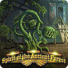 Spirit of the Ancient Forest
